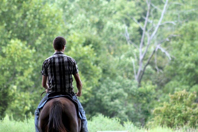 rando-cheval-ardennes-adrenaline
